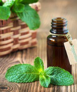 Tinh Dầu Bạc Hà Nguyên Chất 100% | Perpermint Essential Oil Pure 100%