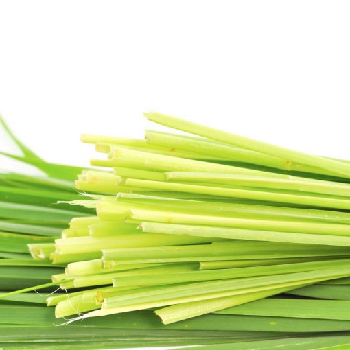Tinh Dầu Sả Java Việt Nam Nguyên Chất 100% | Citronella Essential Oil Organic 100%