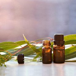 Tinh dầu Bạch Đàn Chanh Nguyên Chất 100% | Eucalyptus Citriodora Essential Oil Pure 100%