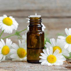 Tinh dầu Hoa Cúc Nguyên Chất 30% | Daisy Flower Oil Pure 30%